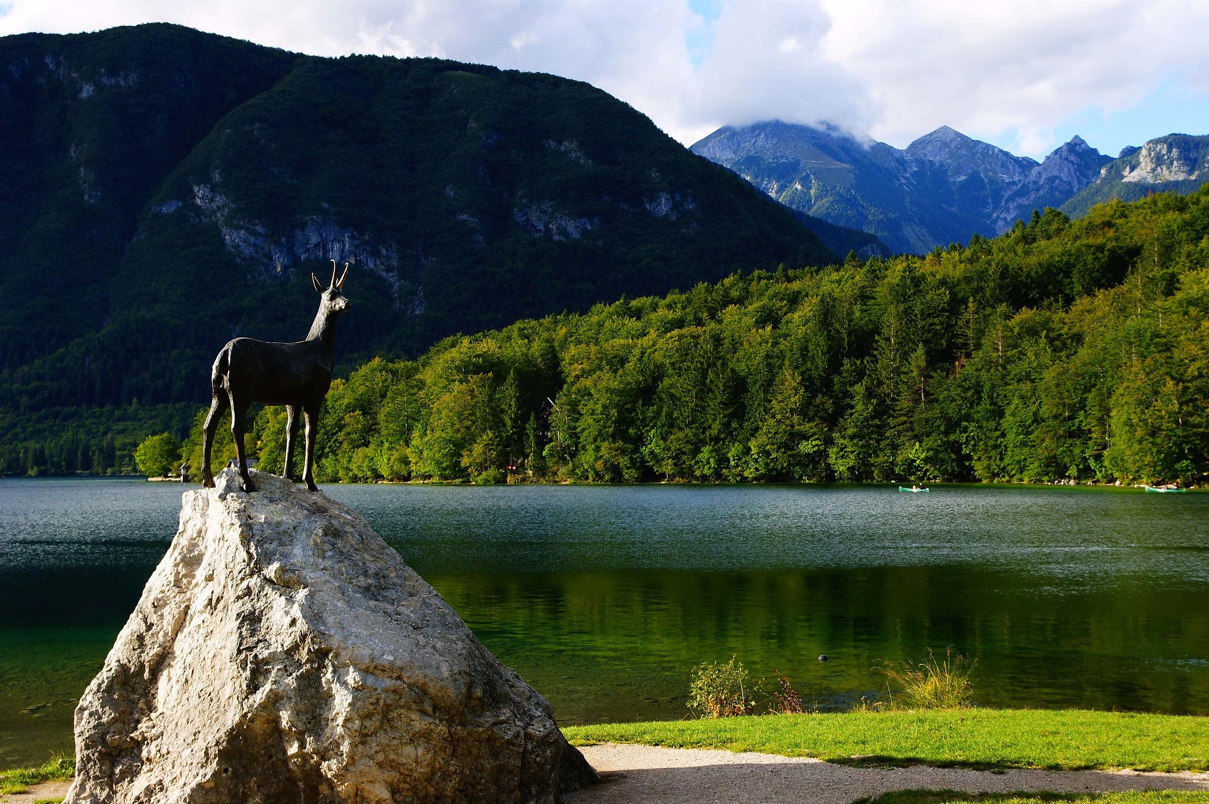 Slovenia lago bohinj...