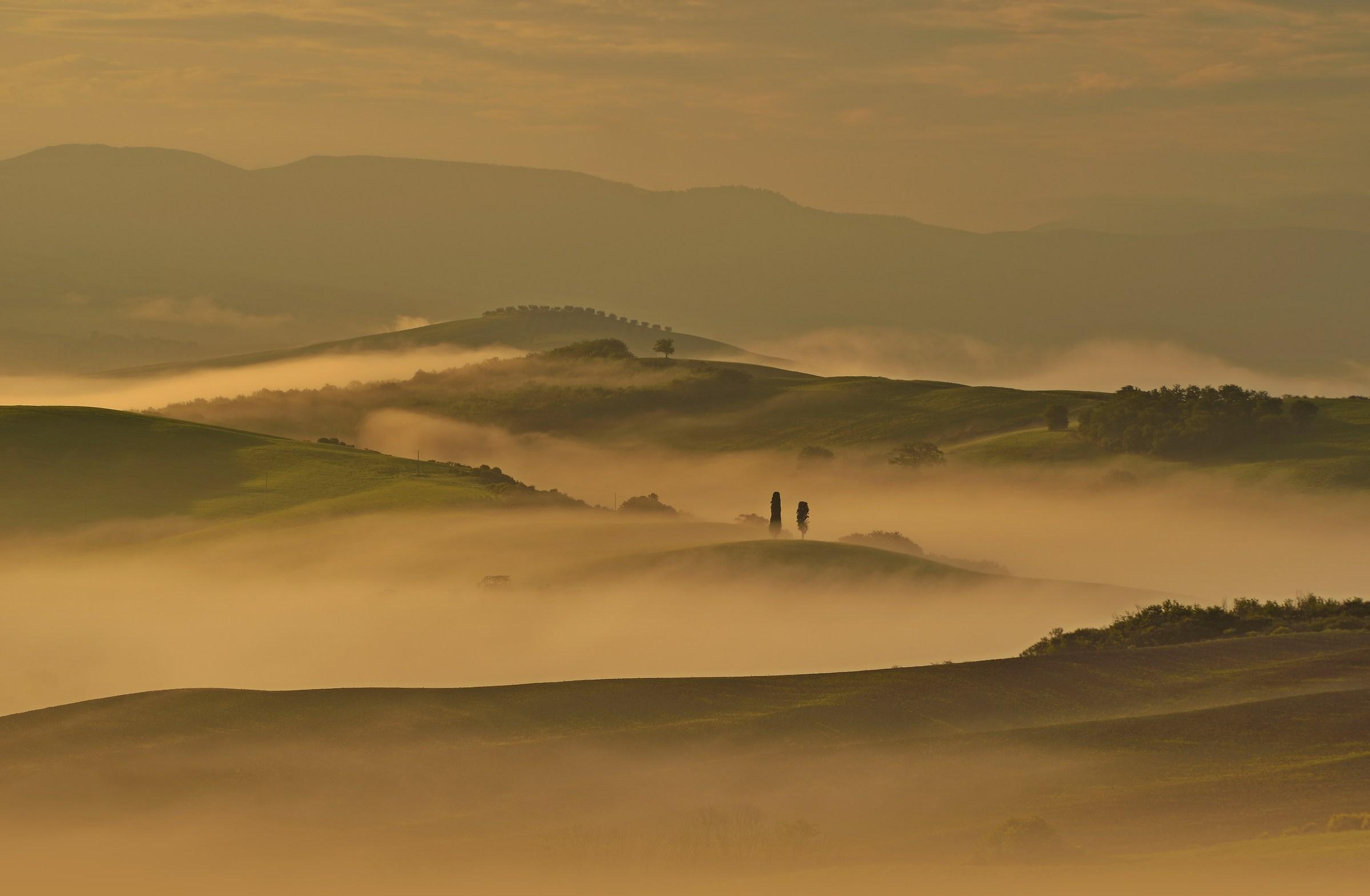 Golden Fog...