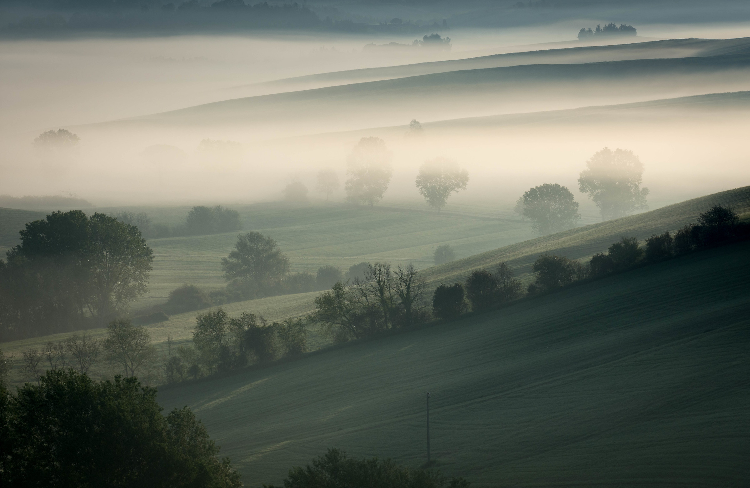 Mist in the morning...