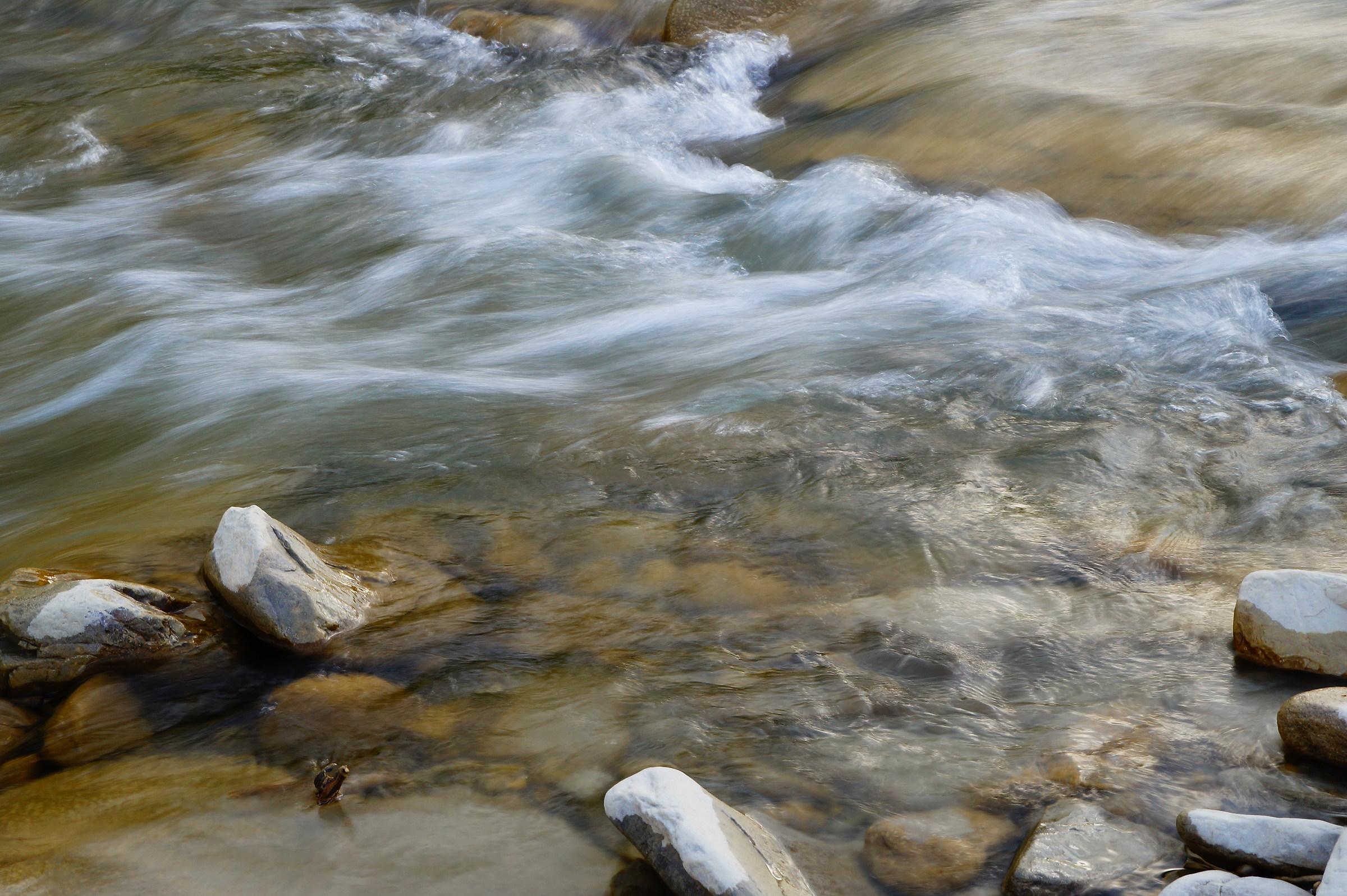 Acqua in movimento...