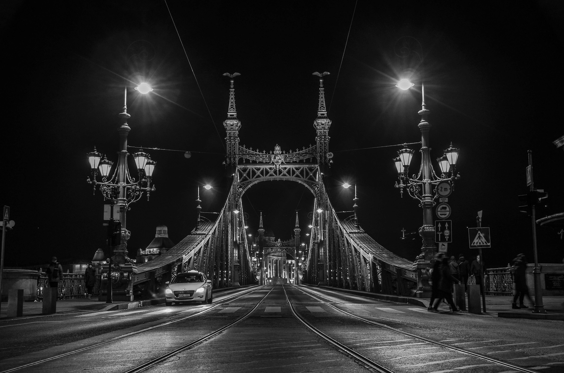 Liberty Bridge Budapest BW...