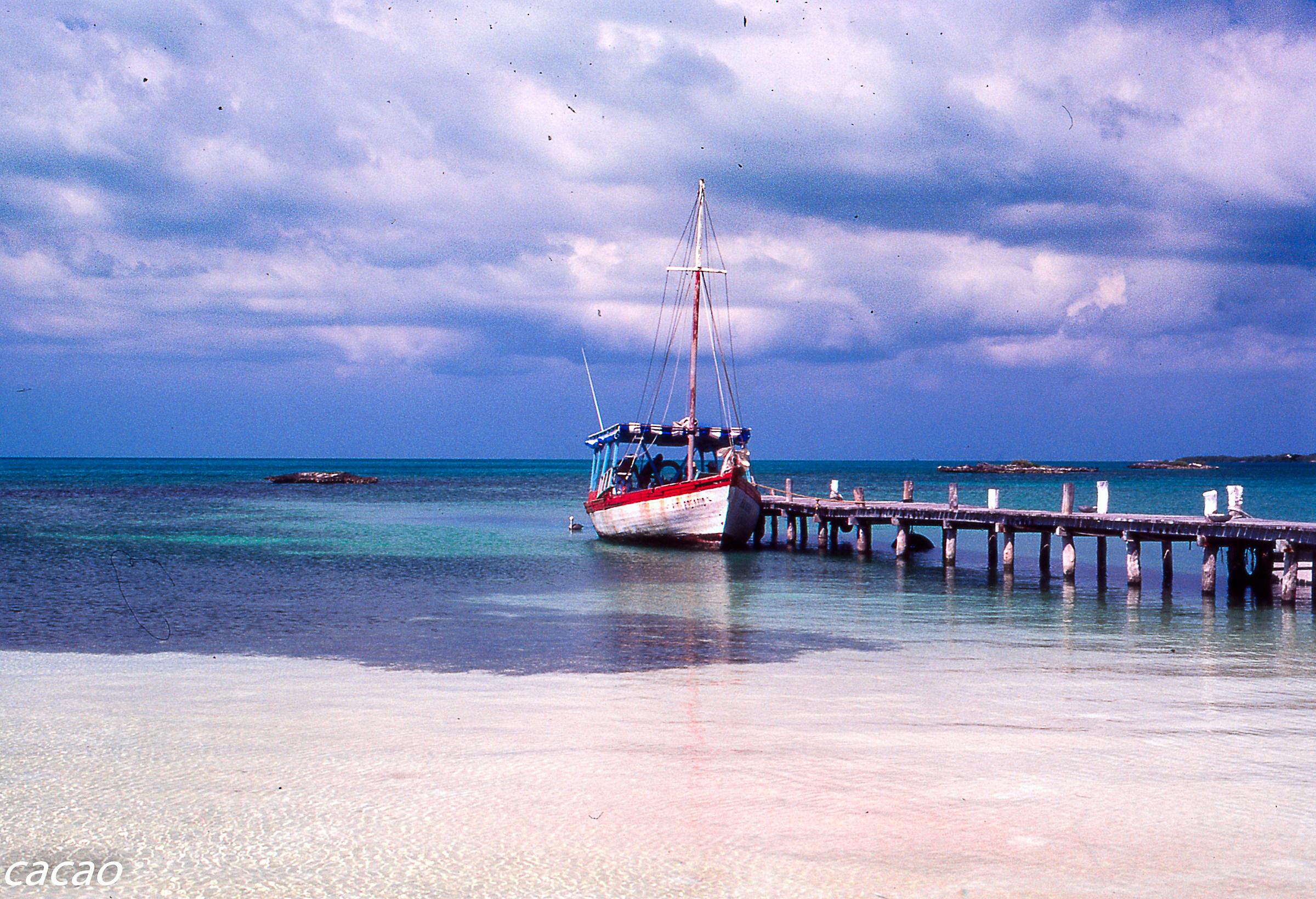 Sabor Caribe Isla Mujeres Yucatan...