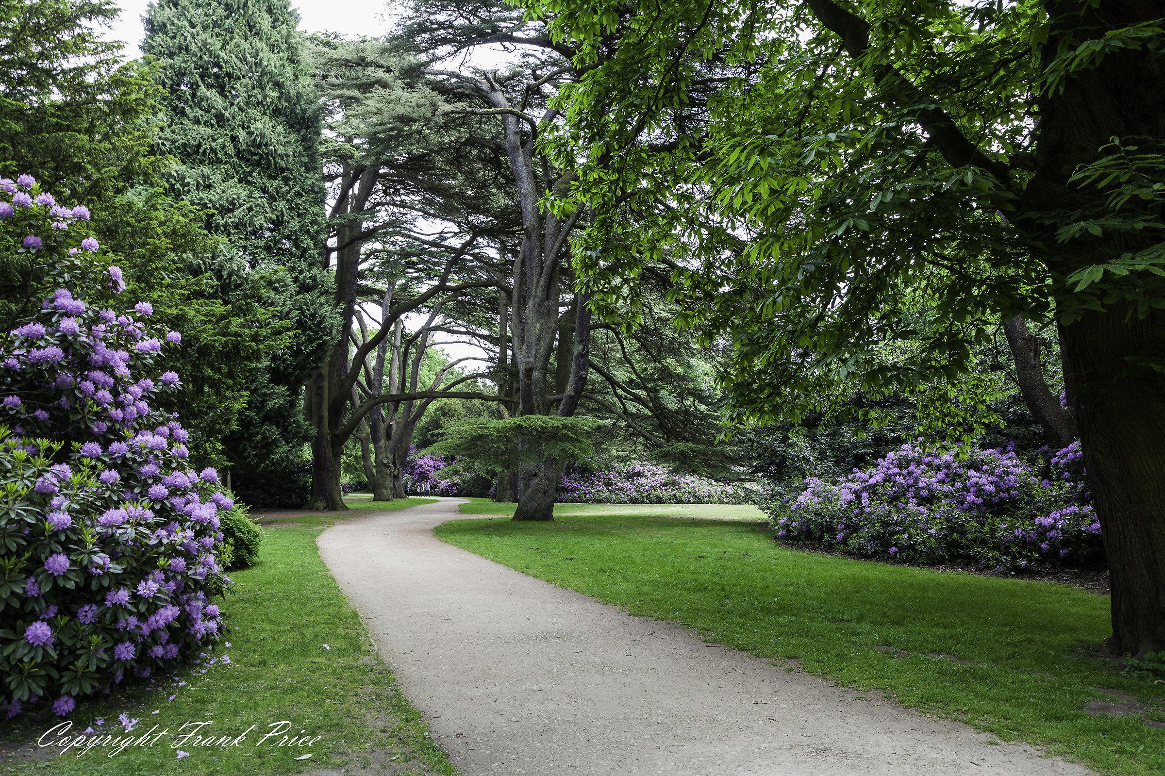 Clumber Park 5...
