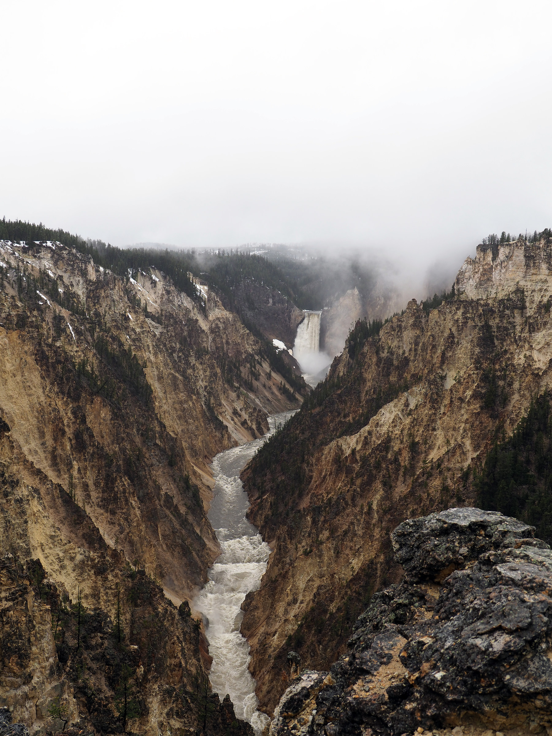 Yellowstone: Upper Falls and Canyon...