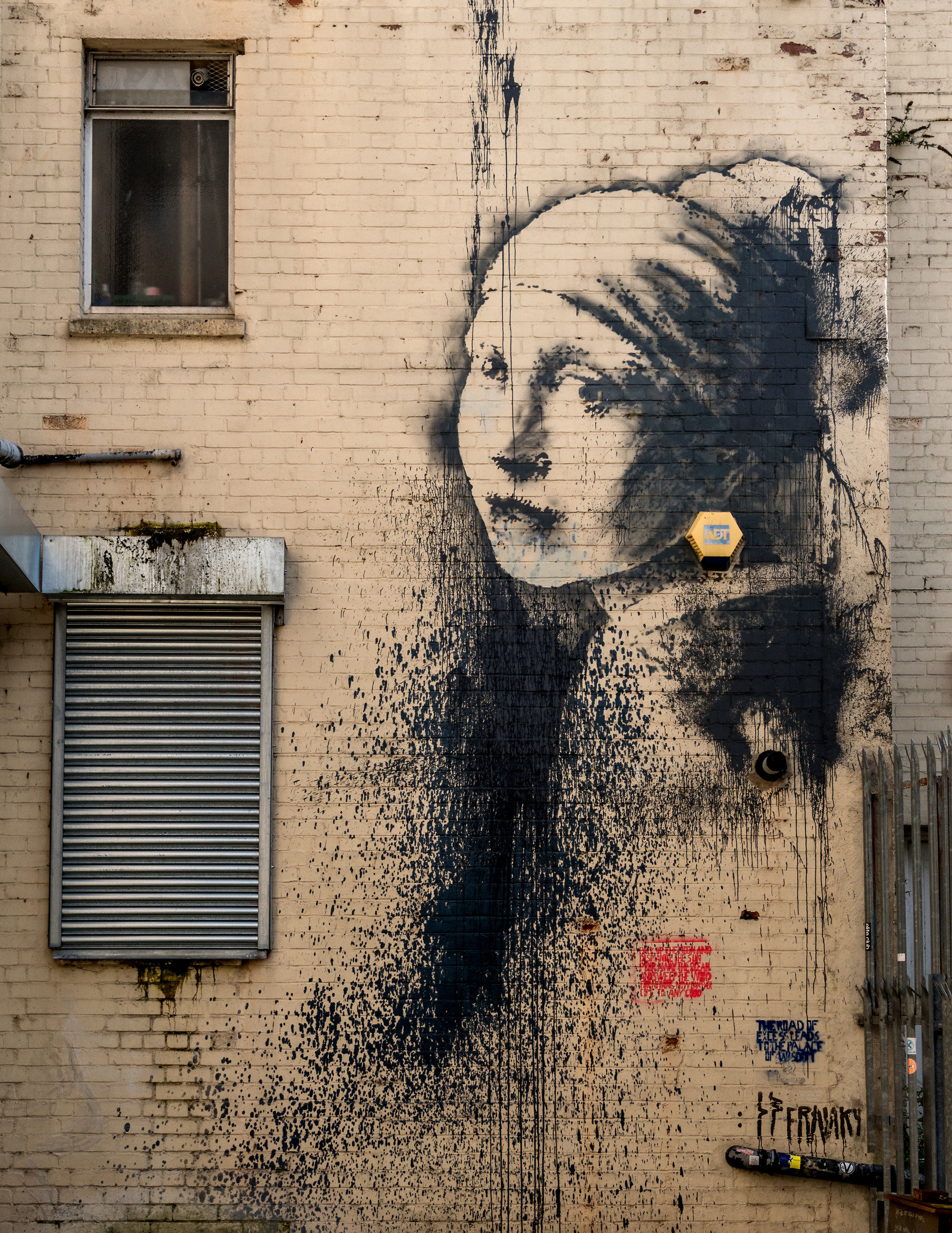 The Girl With A Pearl Earring...