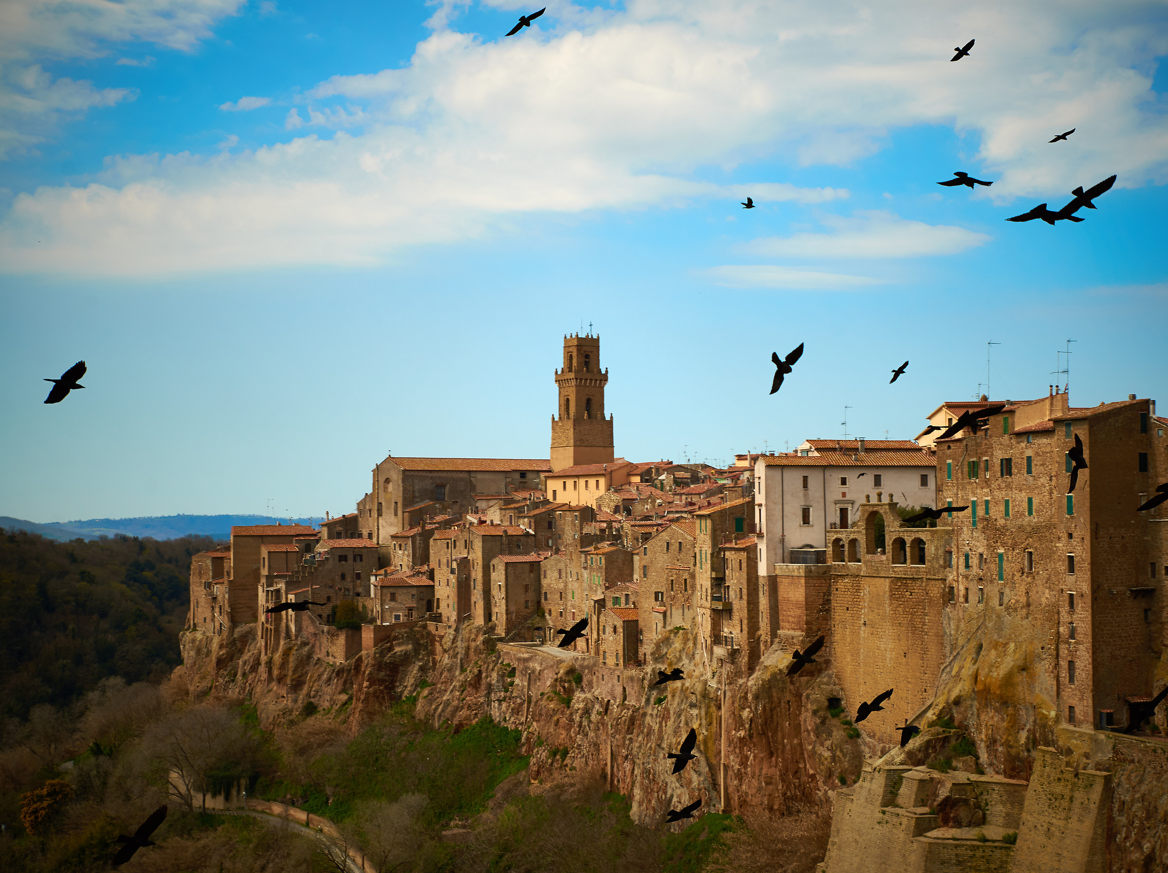 The Crows of Pitigliano...