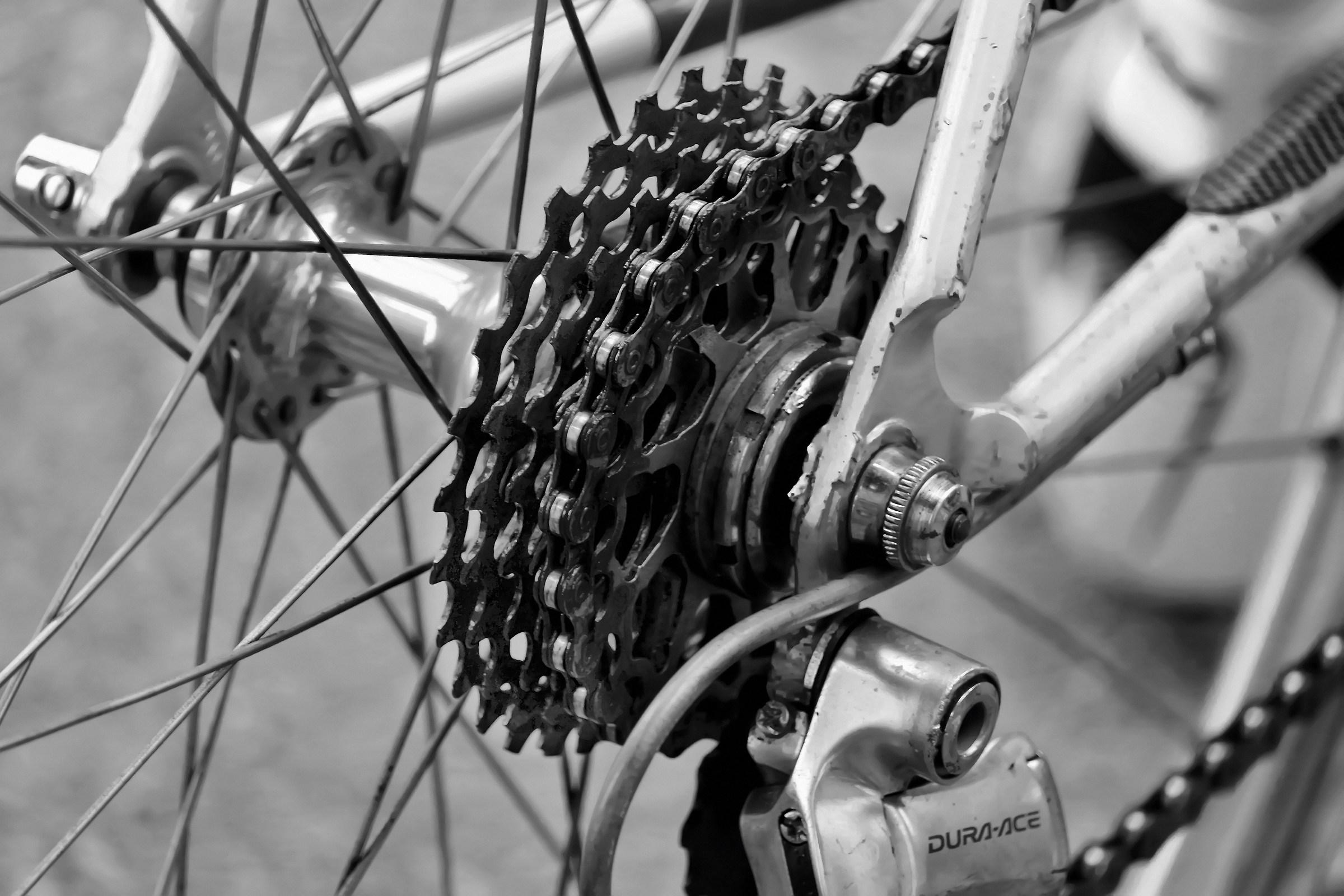 corona bici...