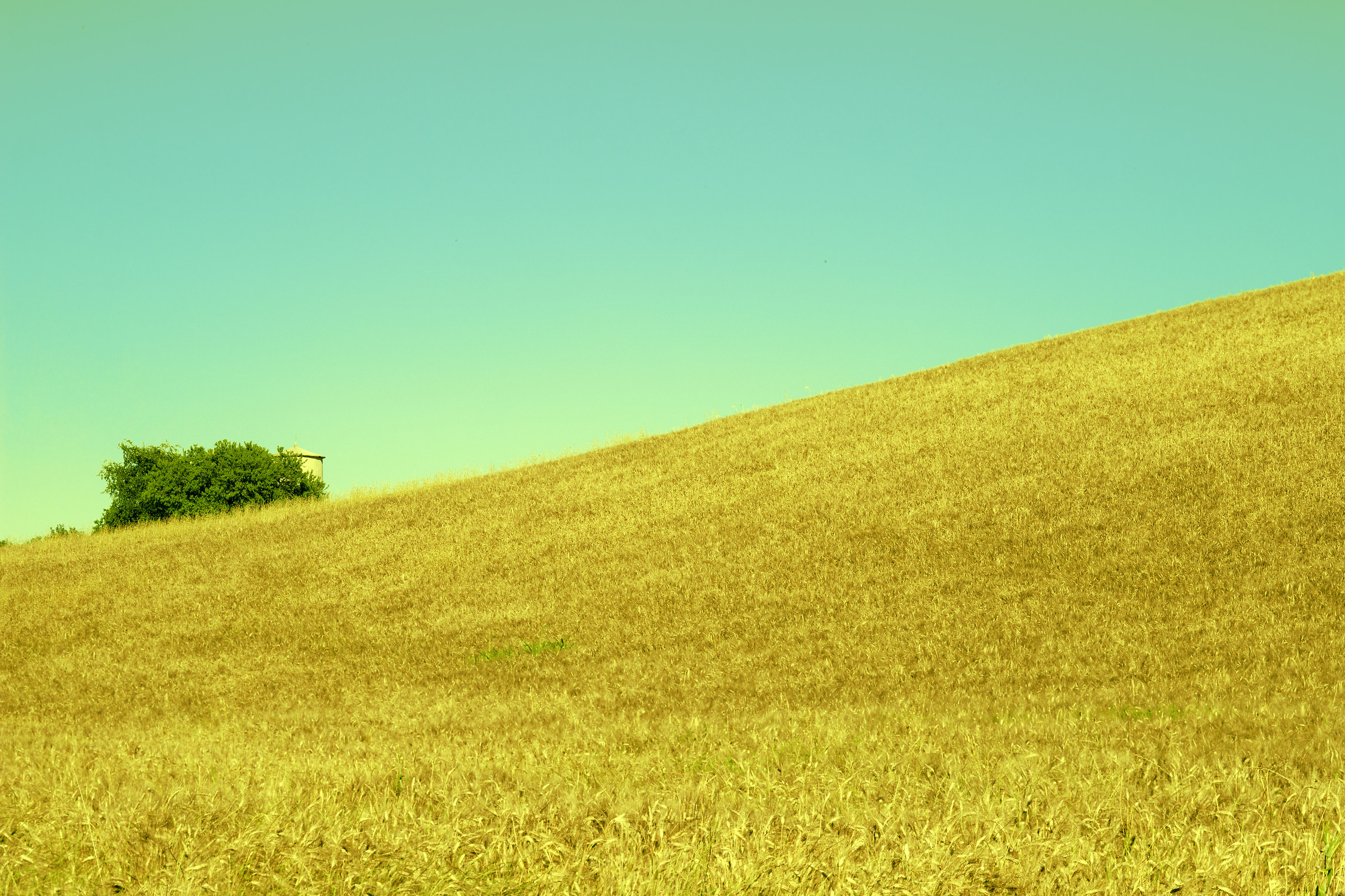 paesaggio...