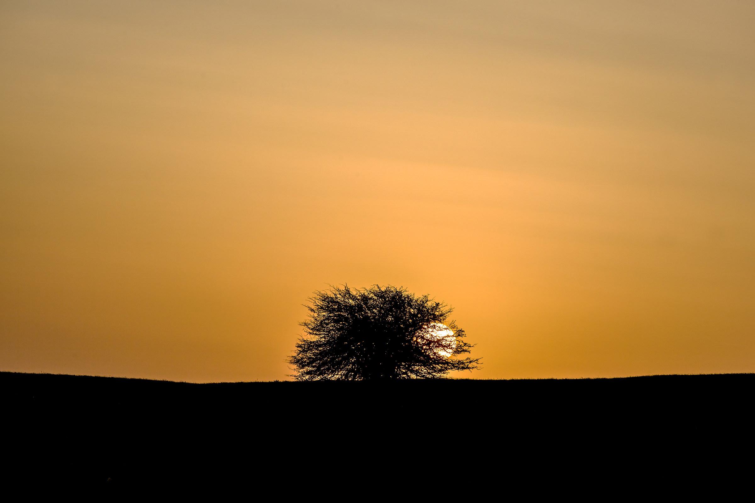 The Sun peeps...
