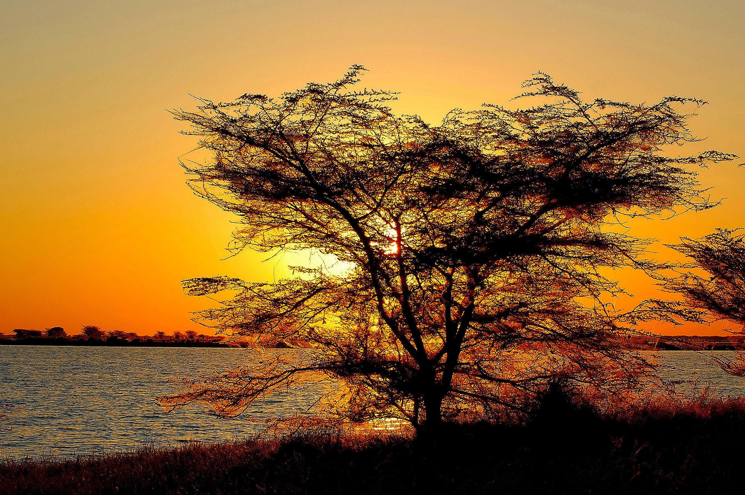 Botswana-Makgadikgadi Pans: Sunset on the Salt Lake...
