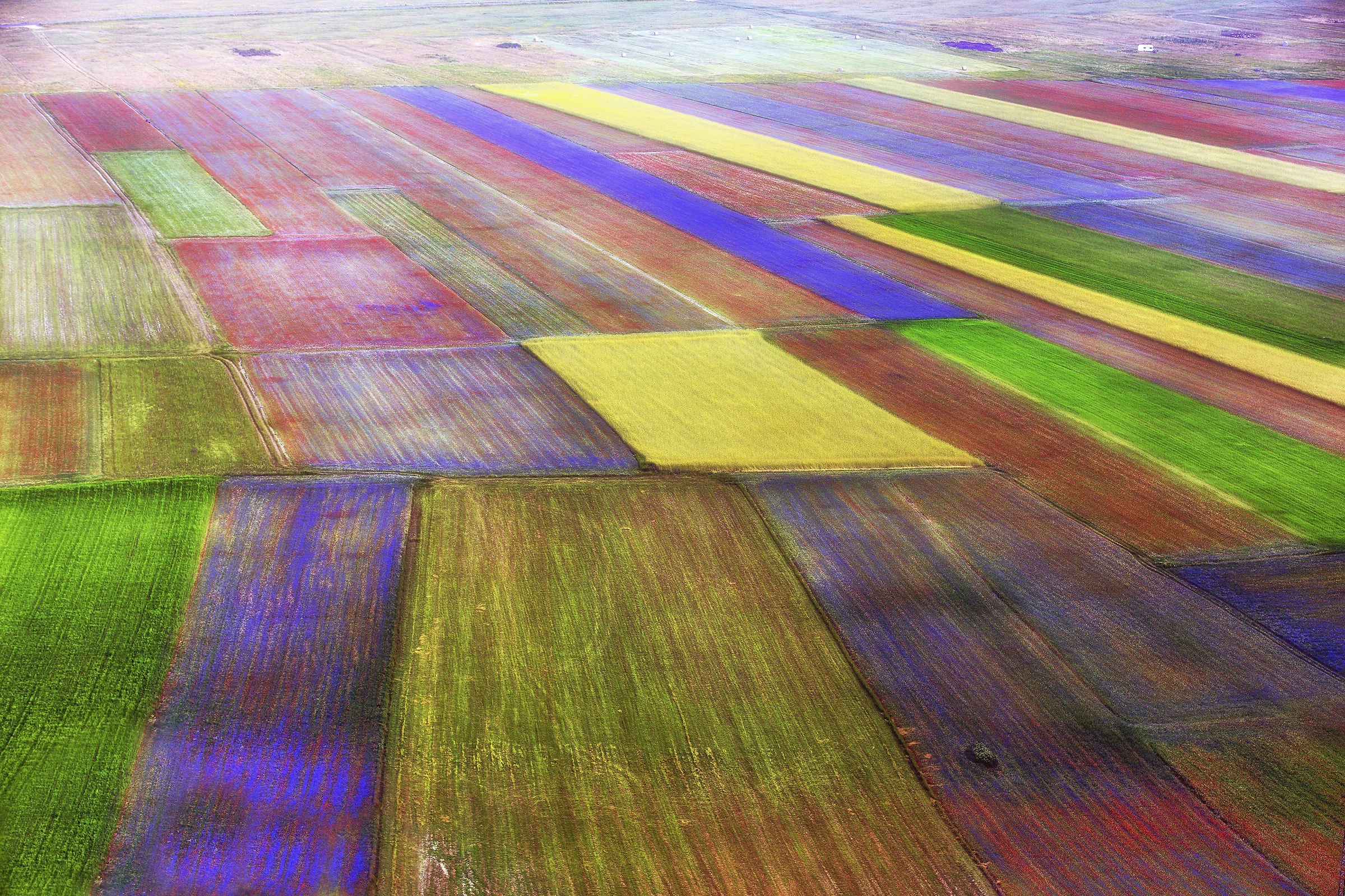 The palette-Flowering Castelluccio 2018 ...
