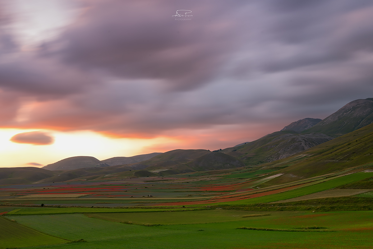 Flowering Castelluccio di Norcia, the Soul and the Wind...
