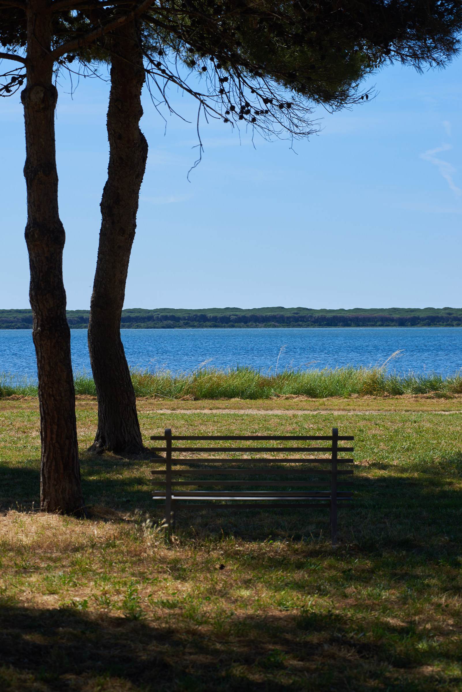 Relax on the Eastern Lagoon...