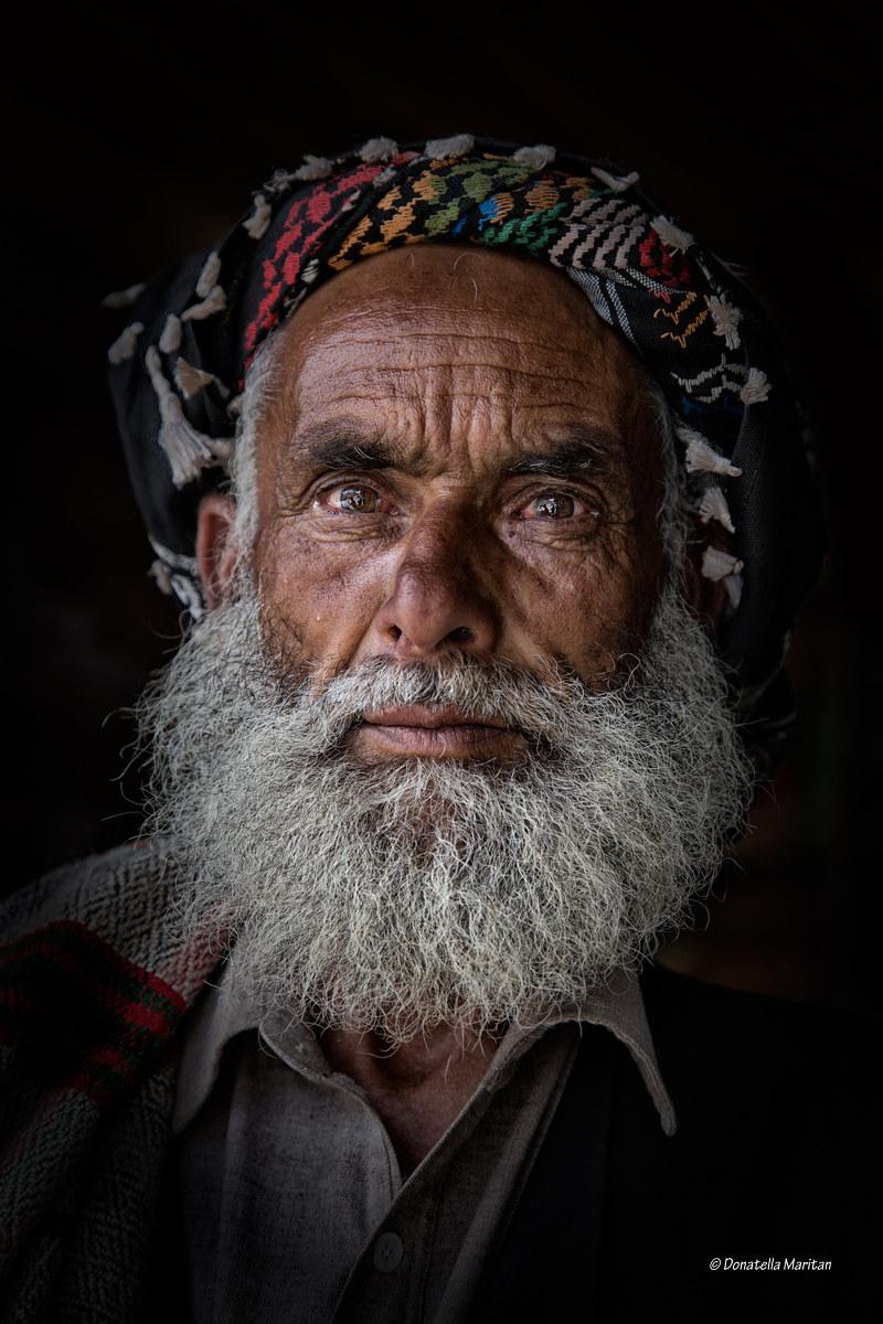 Kashmir Shepherd...