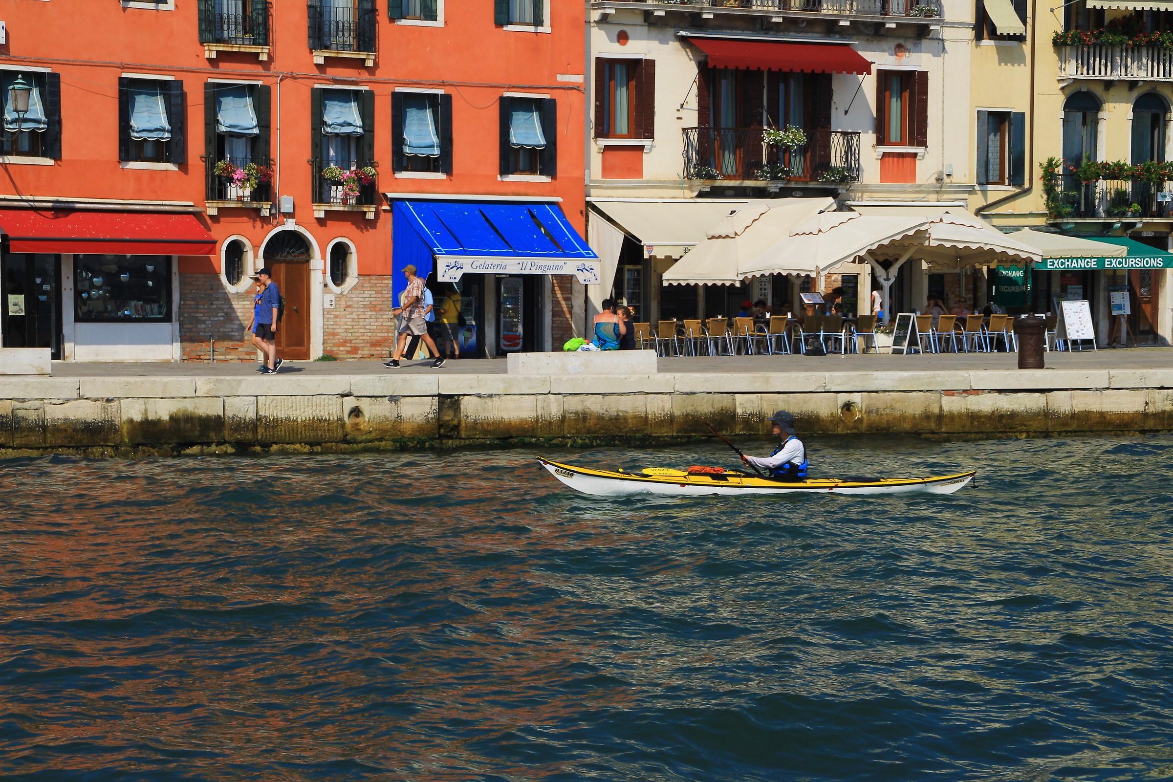 vogatori sul Canal Grande...