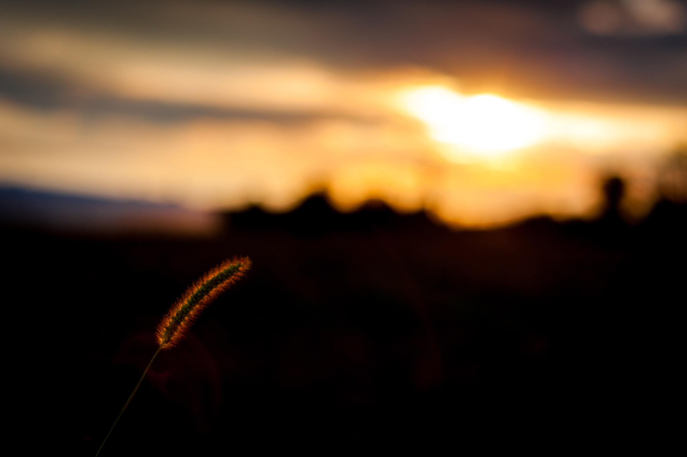 The Last Light...