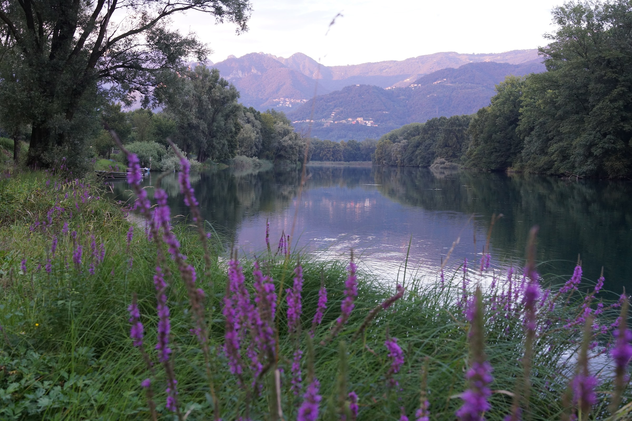 Adda, Reflections at sunset...