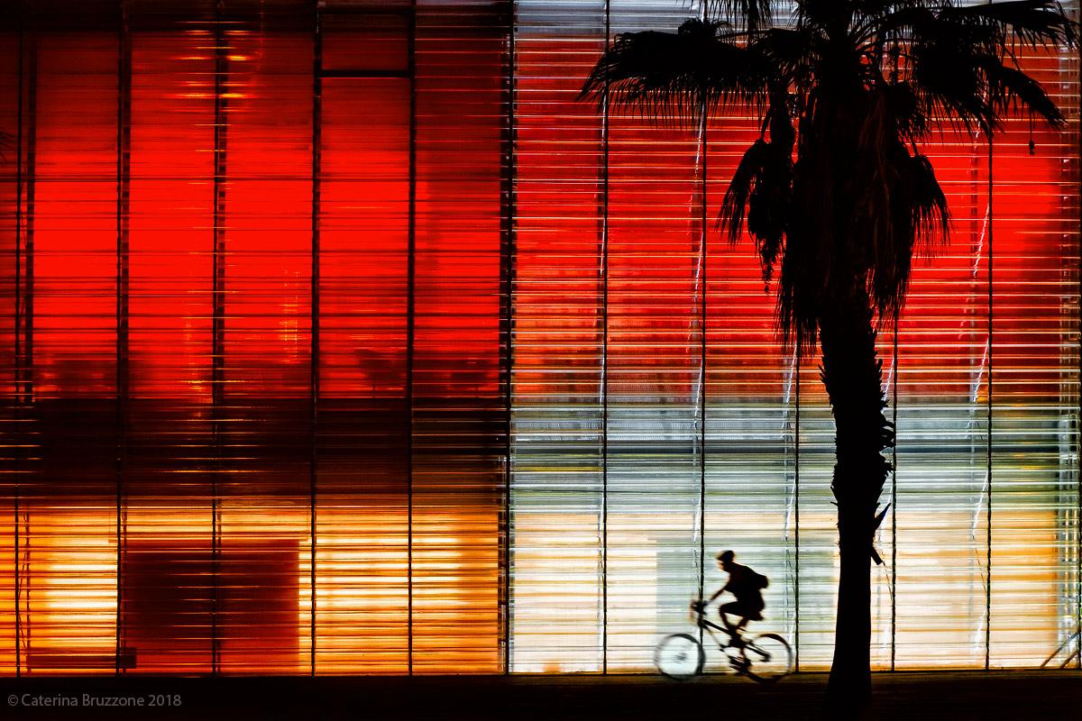 I colori della notte...