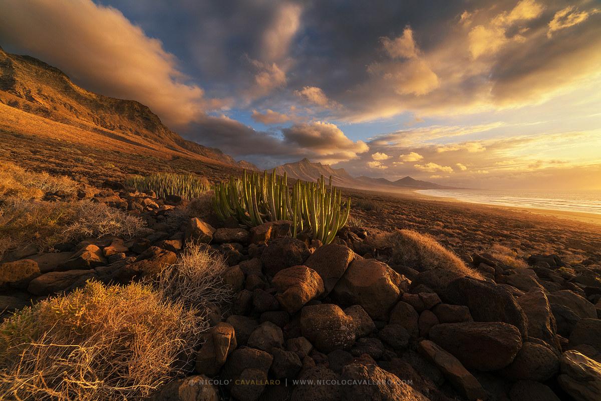 Fuerteventura-Cofete Sunset...