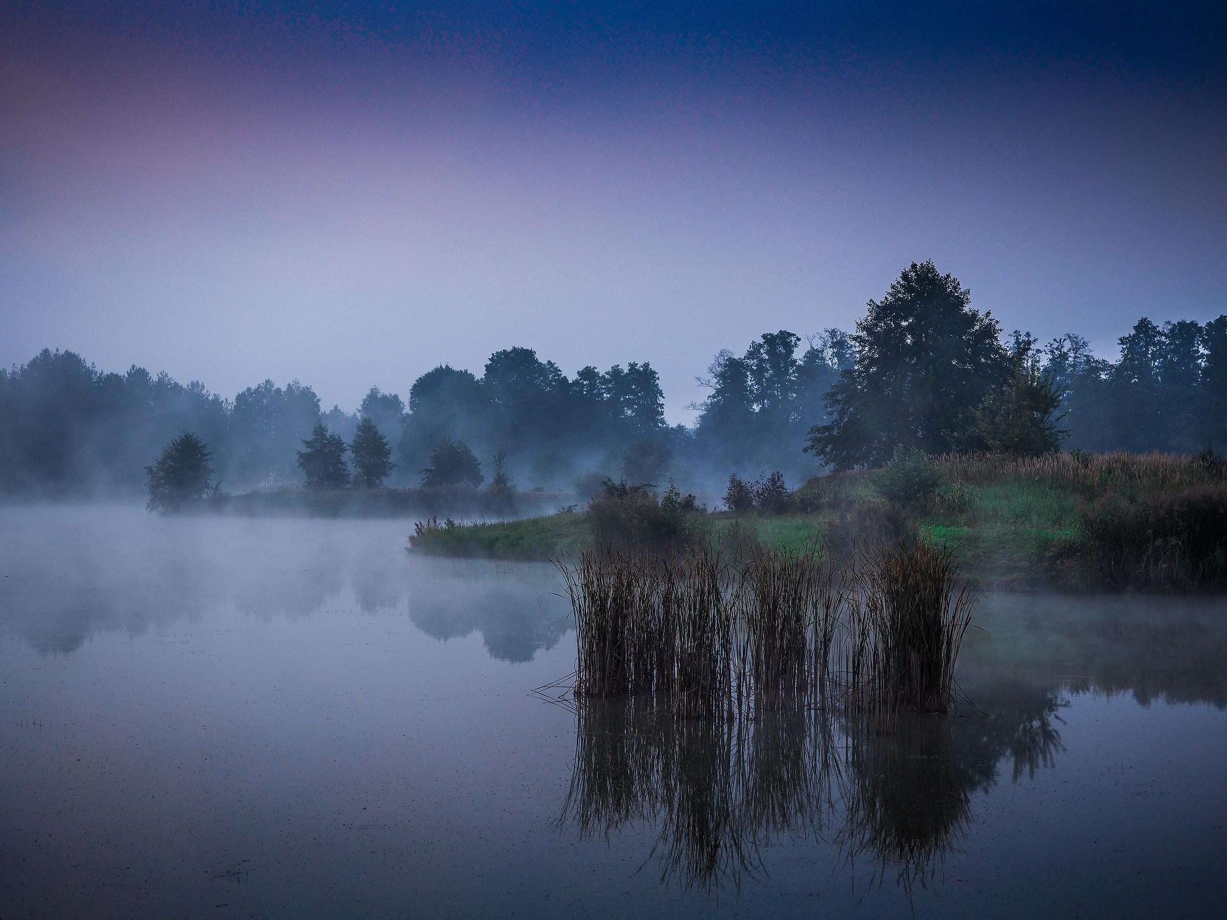 The glow of fog...