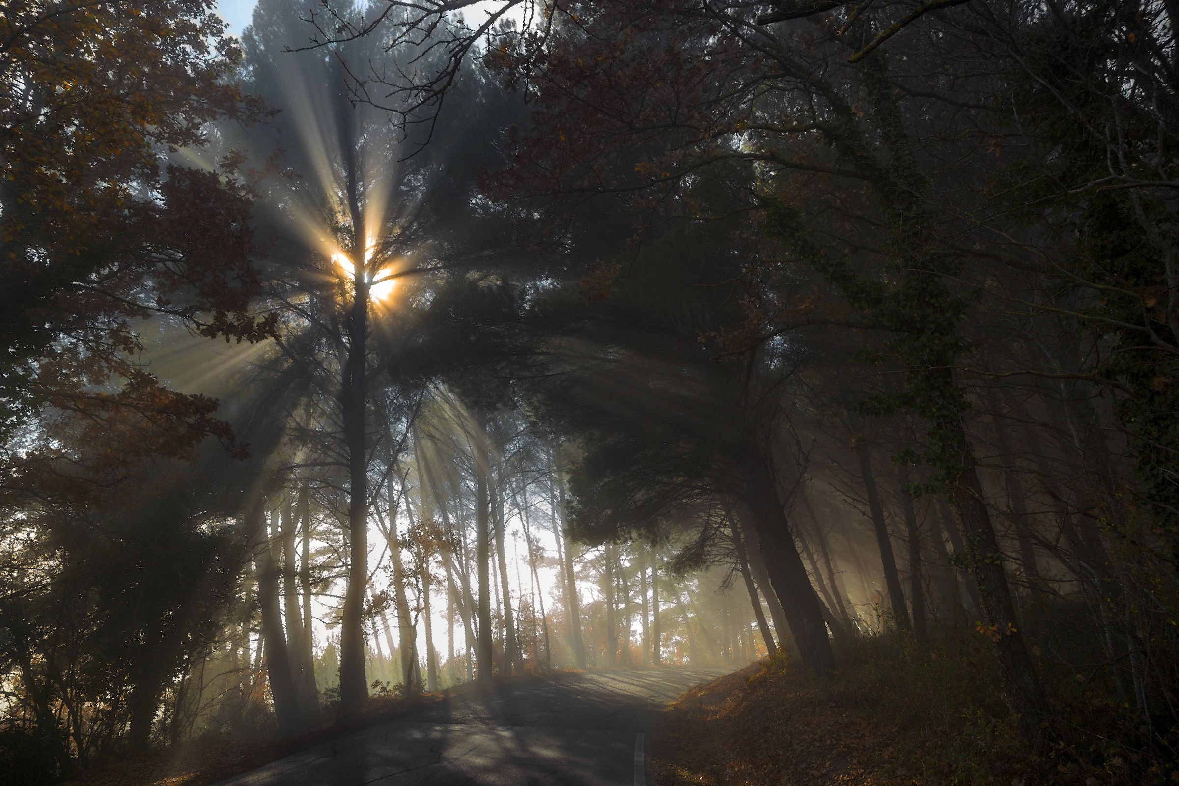 When the light ......