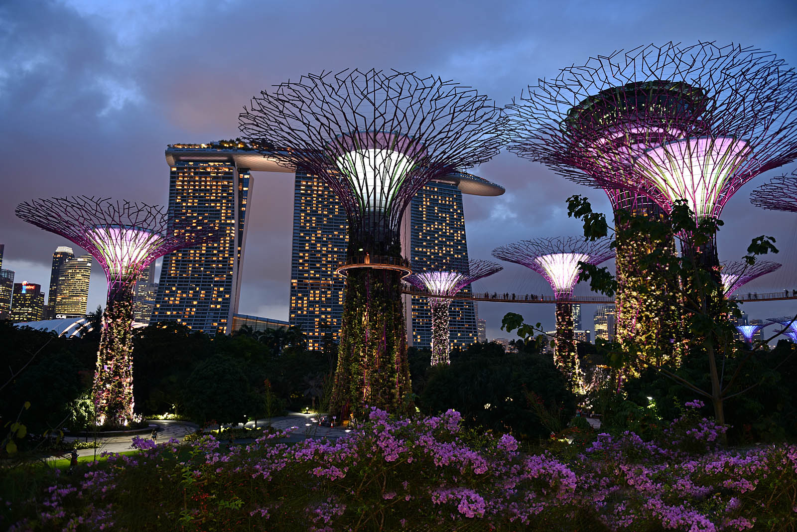 Gardens by the Bay...