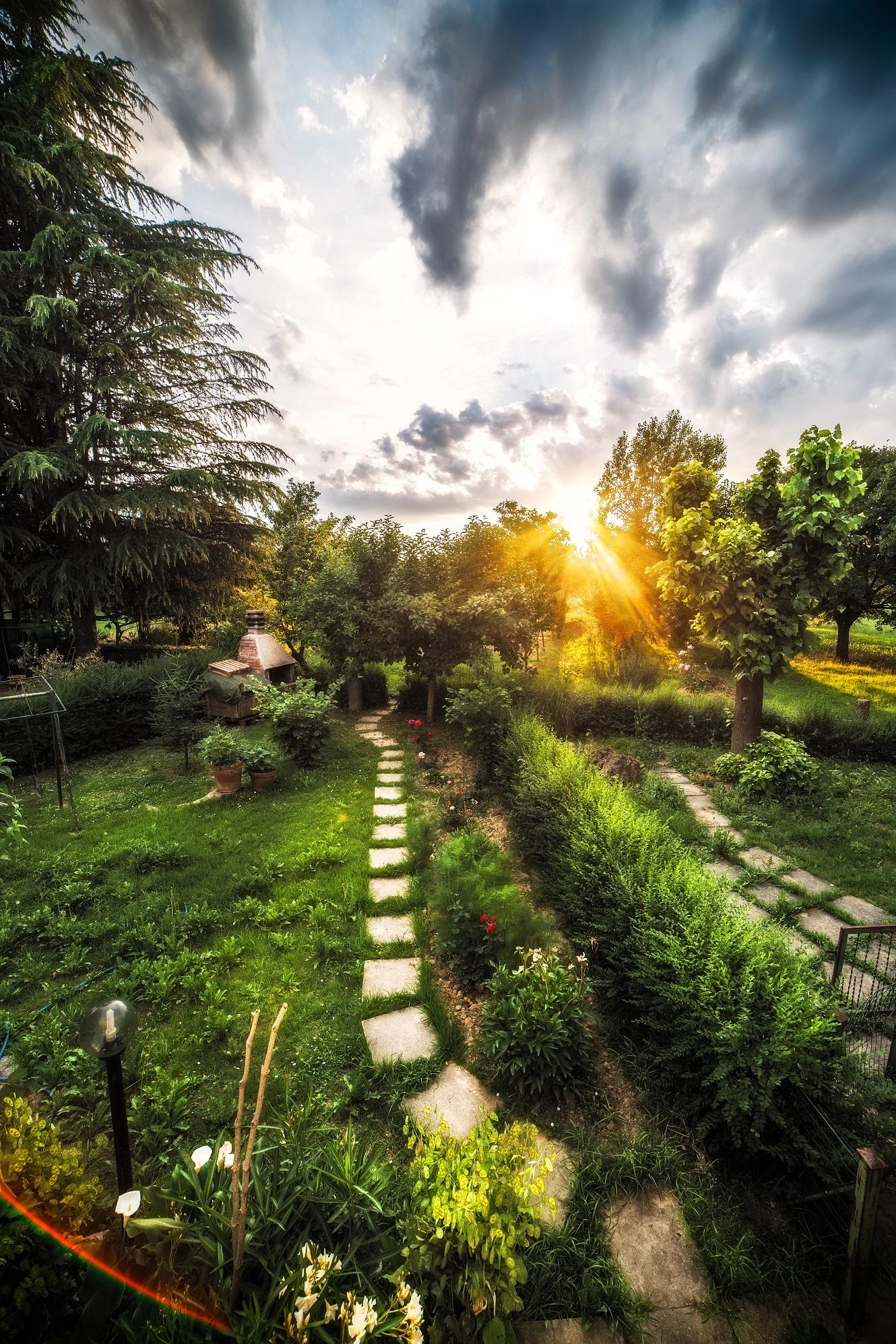 il giardino di casa mia juzaphoto