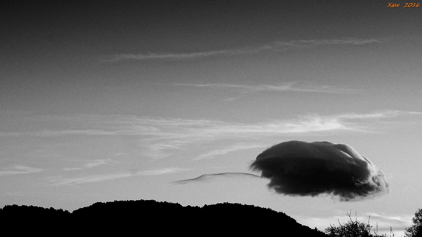 nuvola & coda...