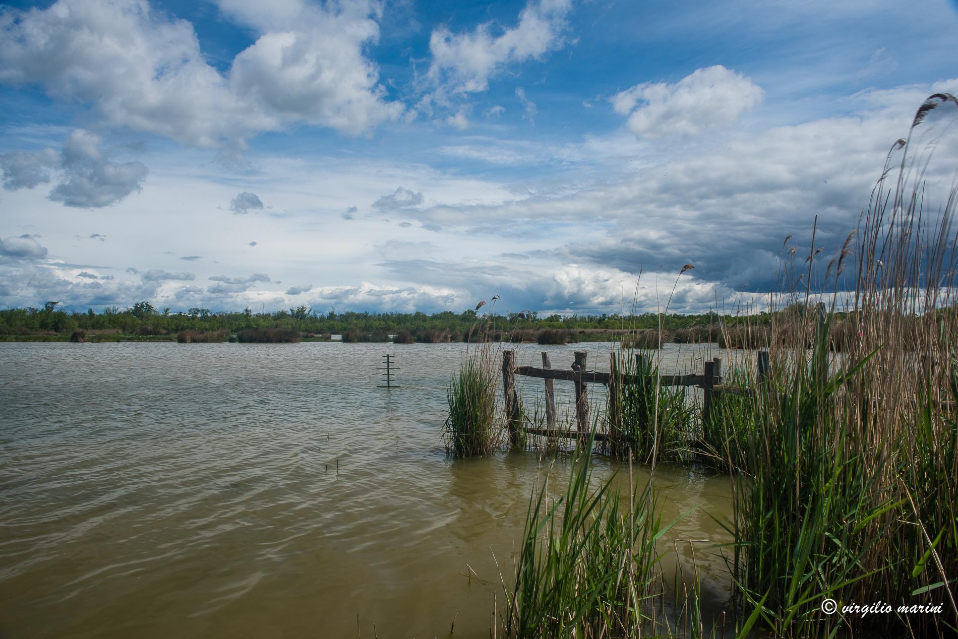 lakescape...