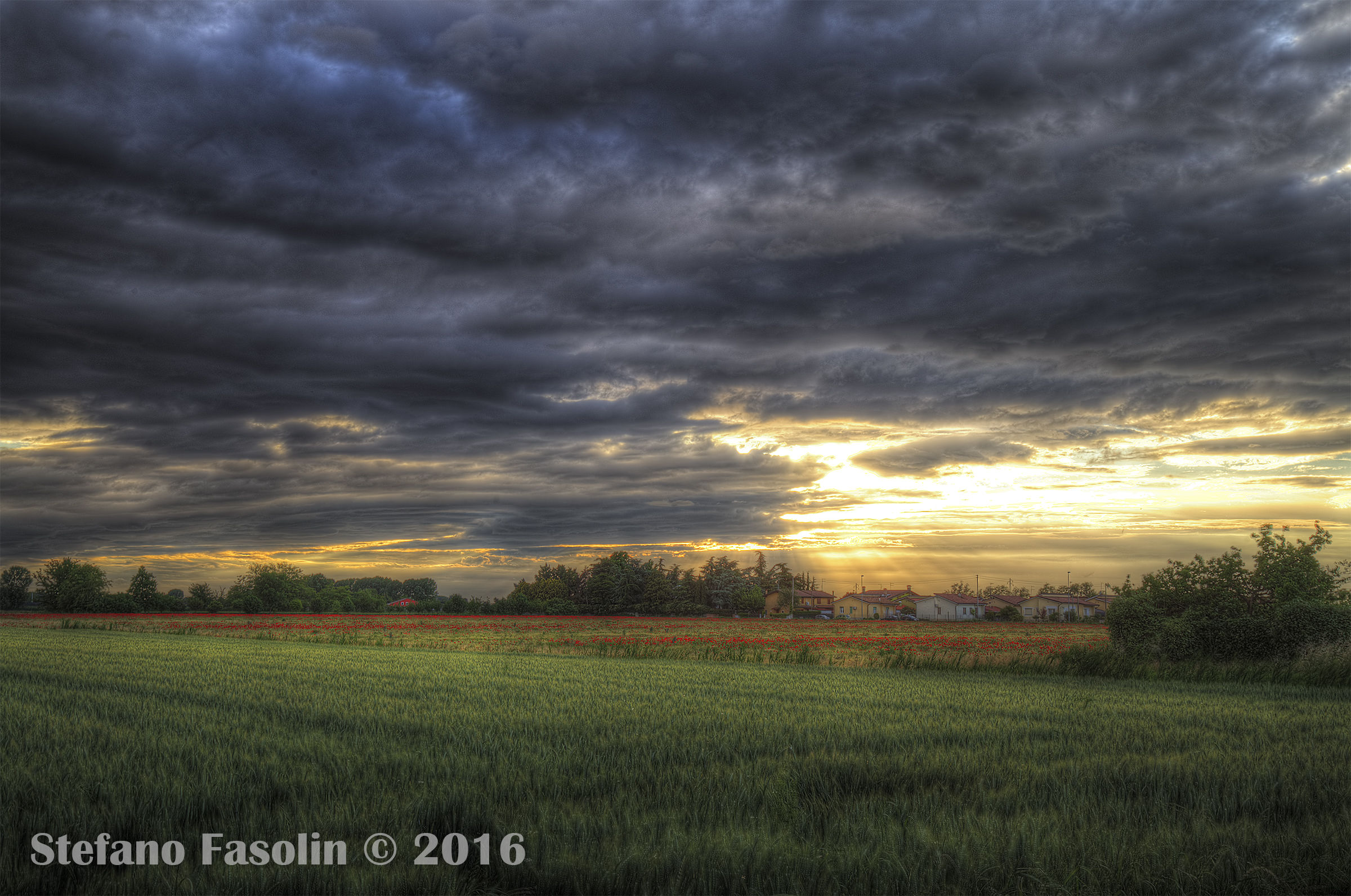 Sunset over wheat fields 2...