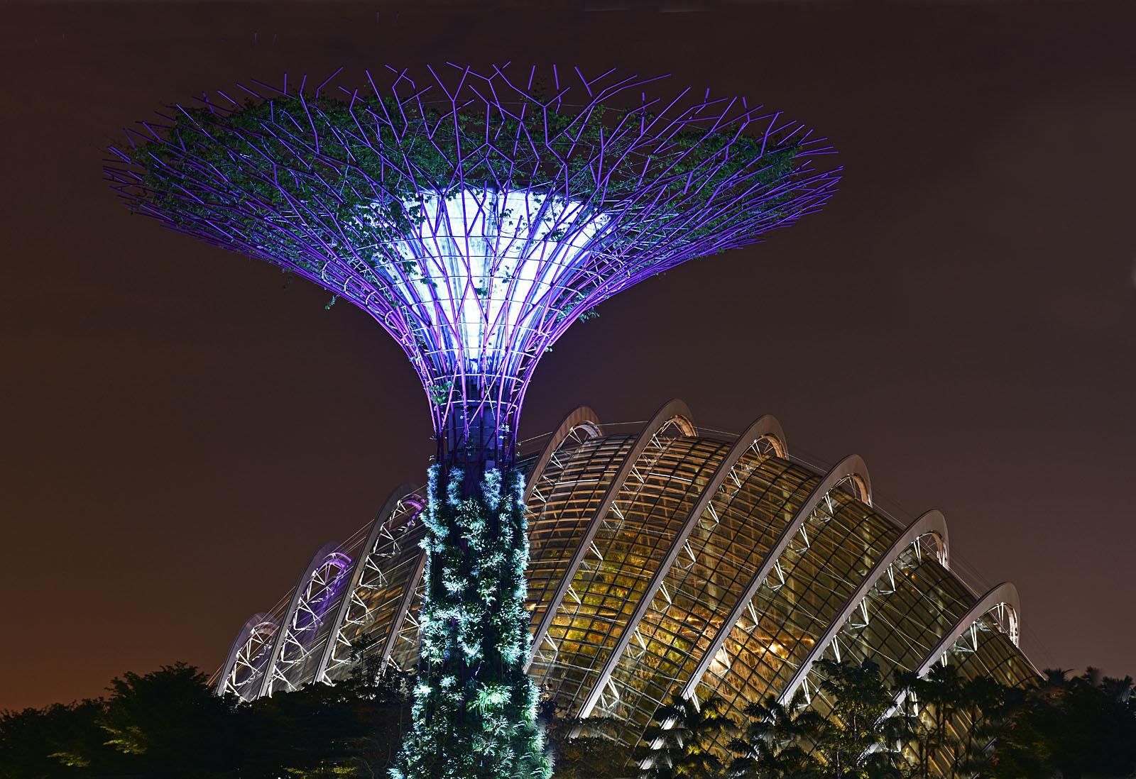 Singapore Marina Bay Cloud Forest...