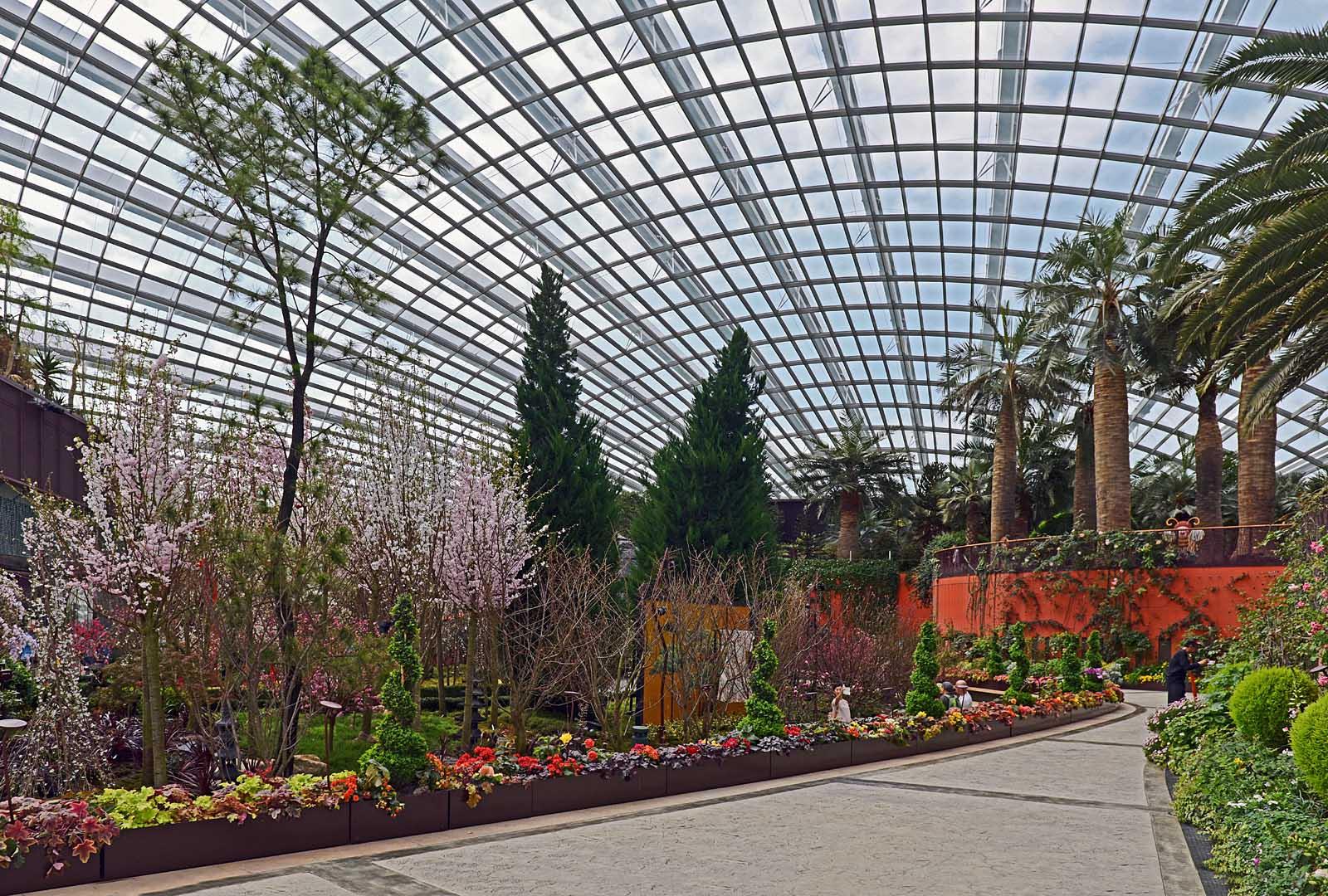 Singapore Flower Dome...