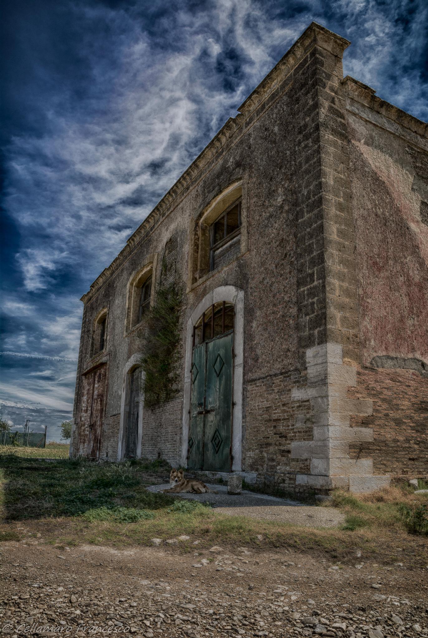 abandoned house...