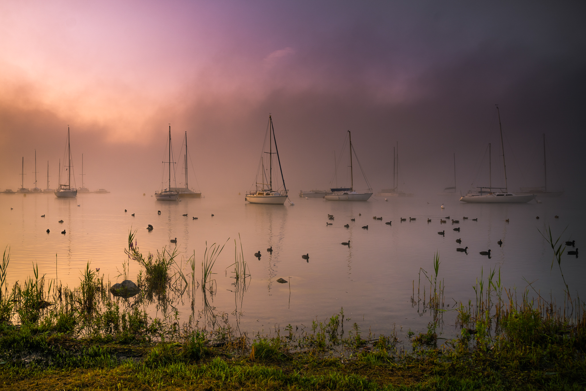 Misty Sunrise...
