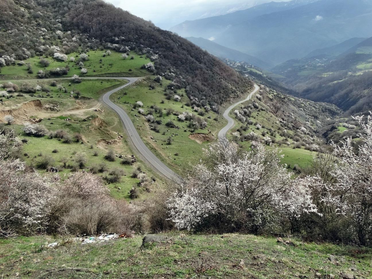 Beautiful road at spring...