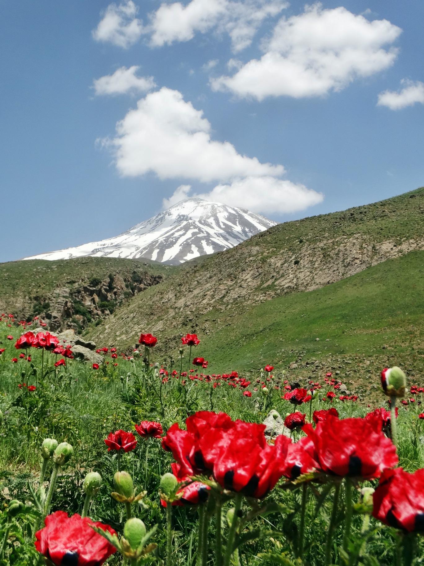 damavand mountain...