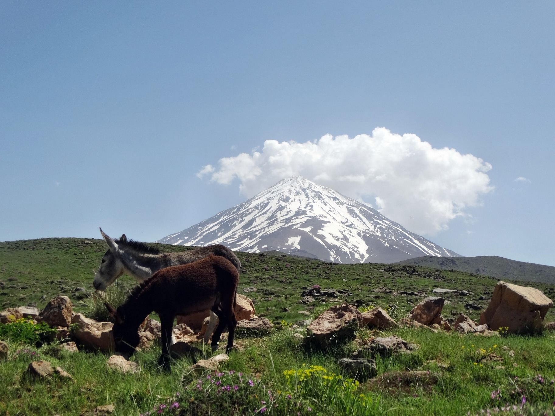 damavand mountain...