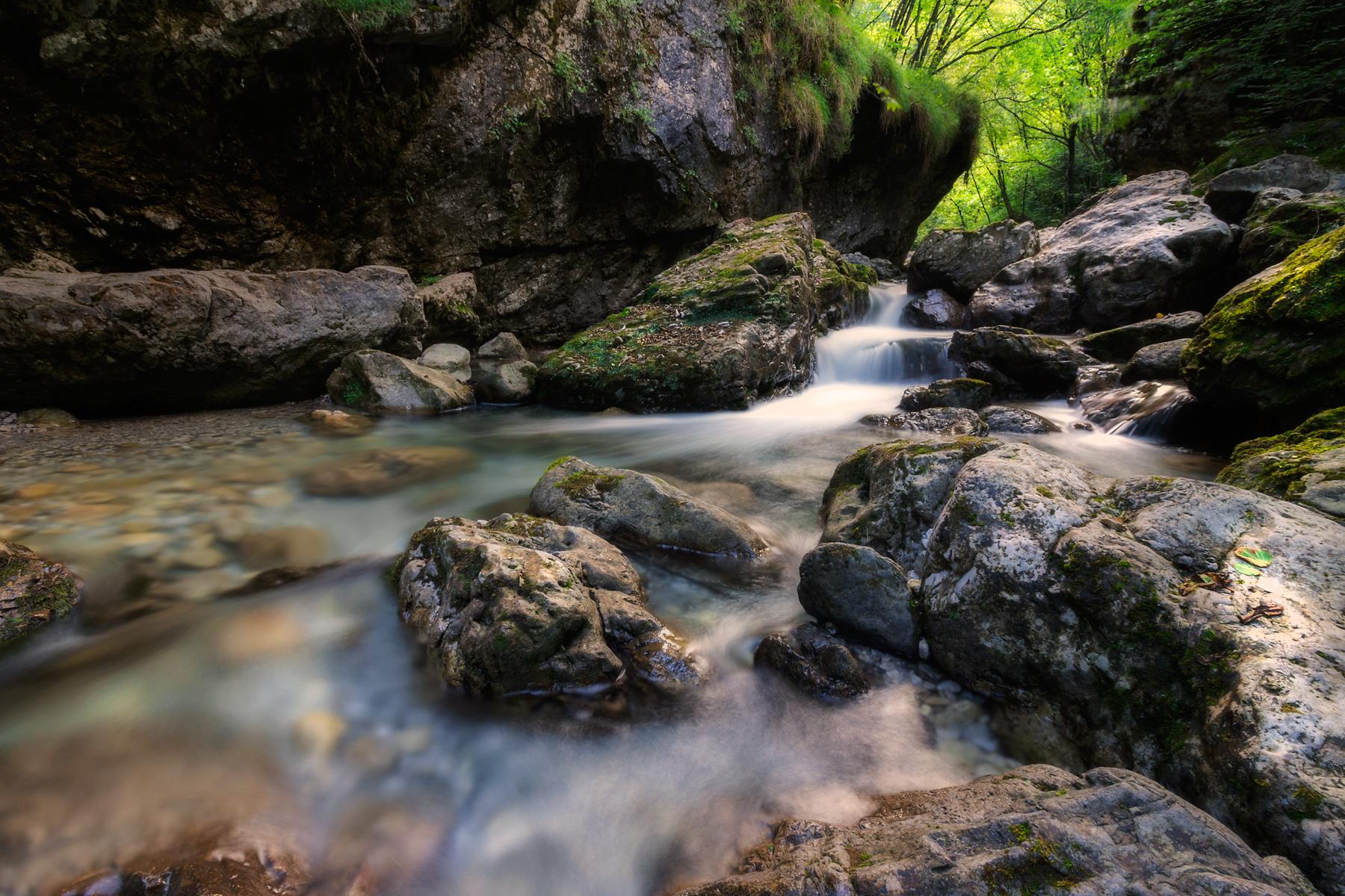 Summer's creek...