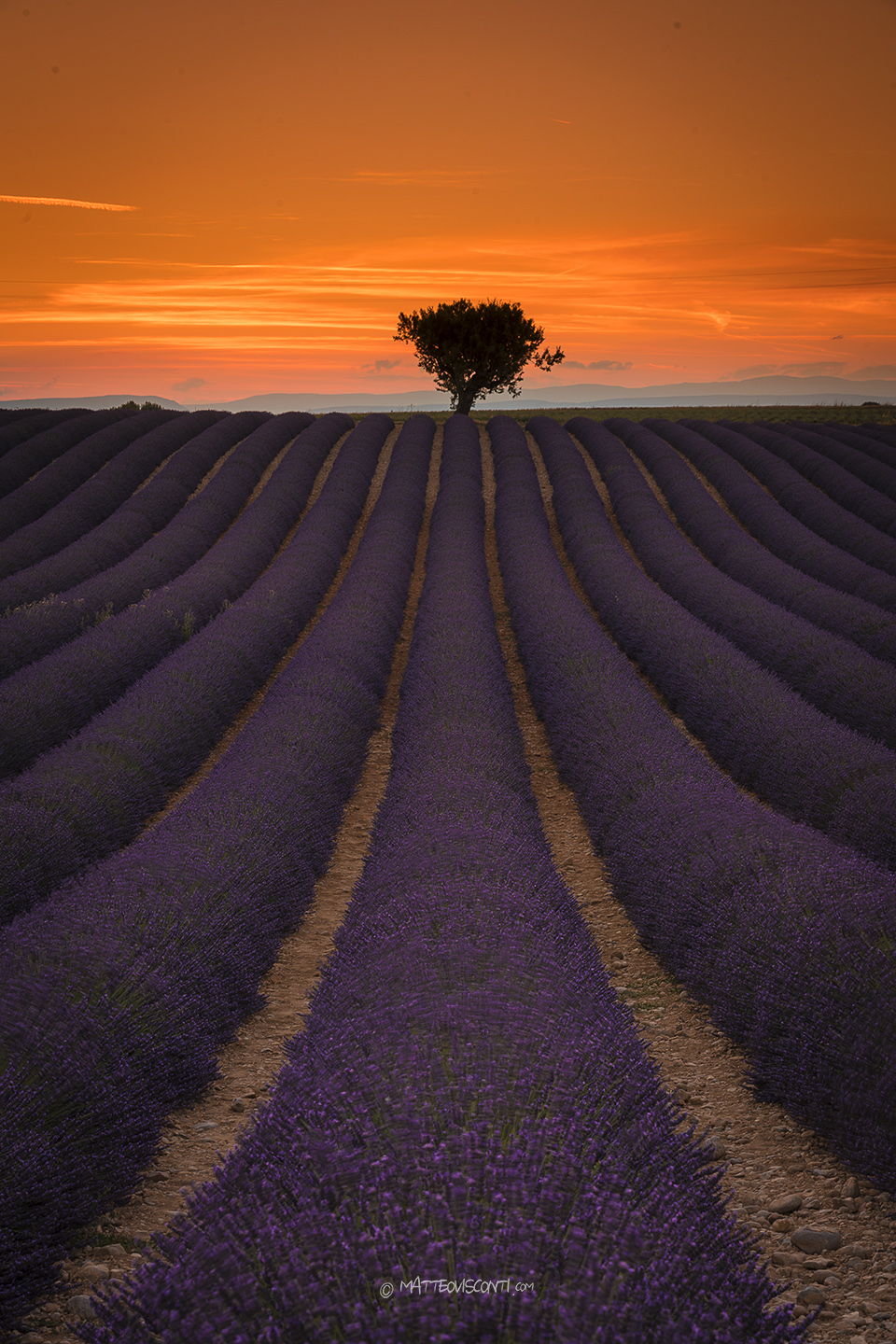 sunset in valensole...