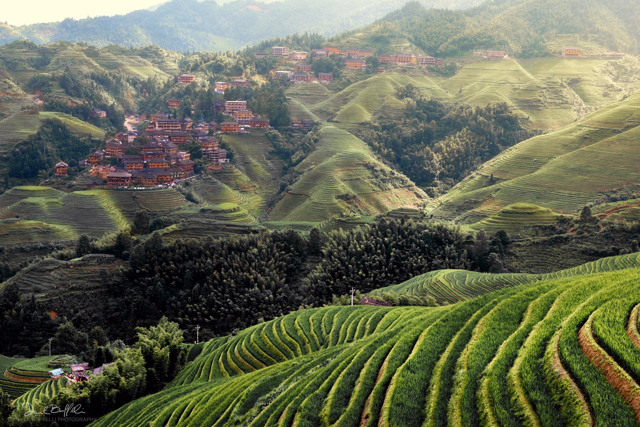 Terrazzamenti di riso a Longsheng, Yunnan...