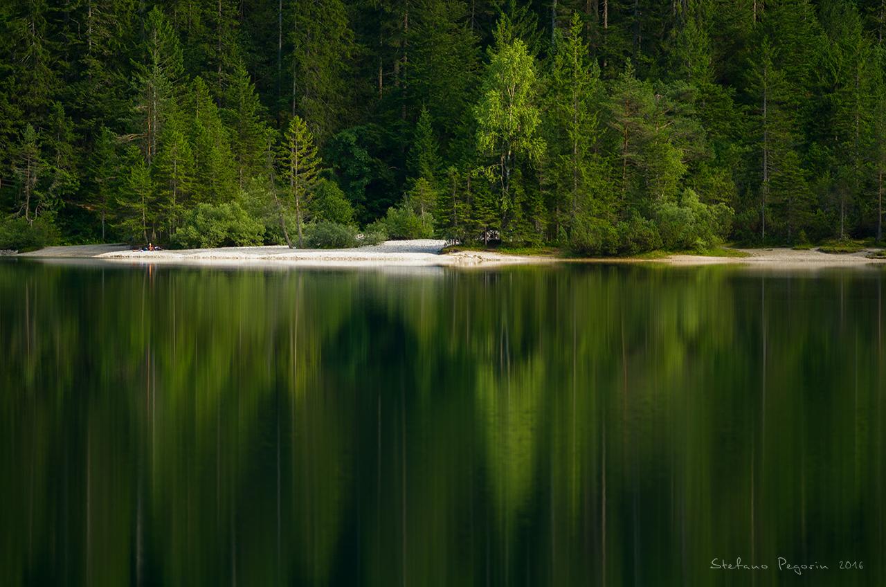 Paradise Green...