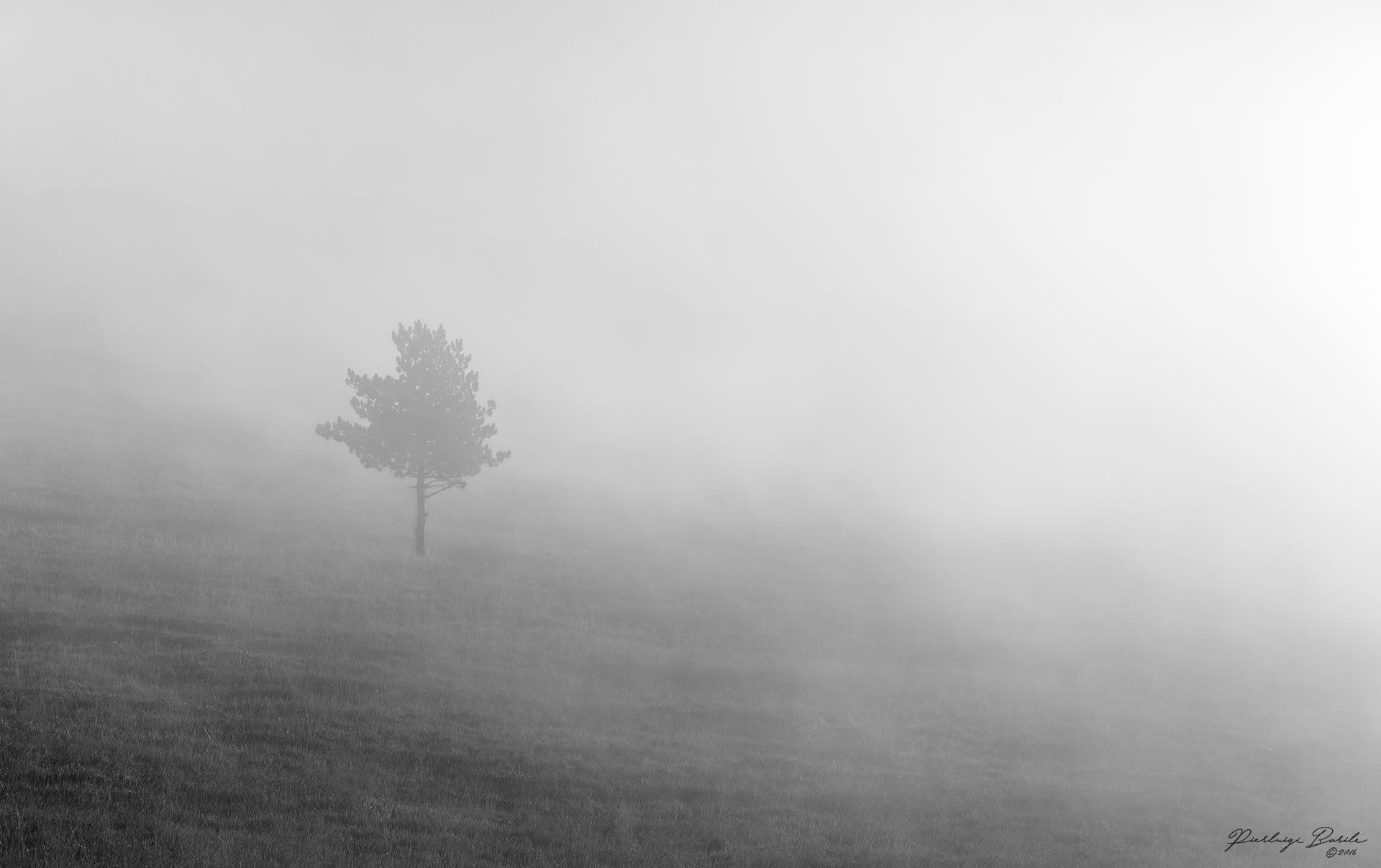 Loneliness in the fog...