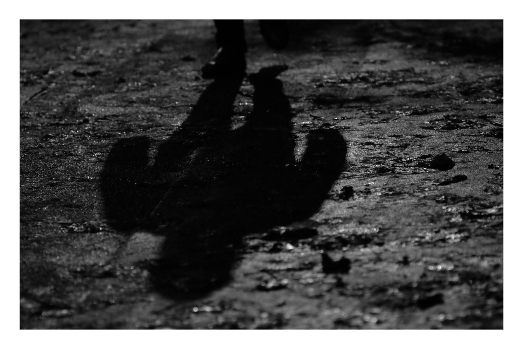 Shadows Fall...