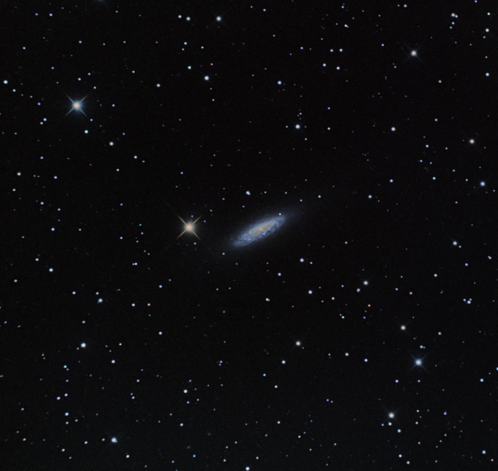 NGC 6503...