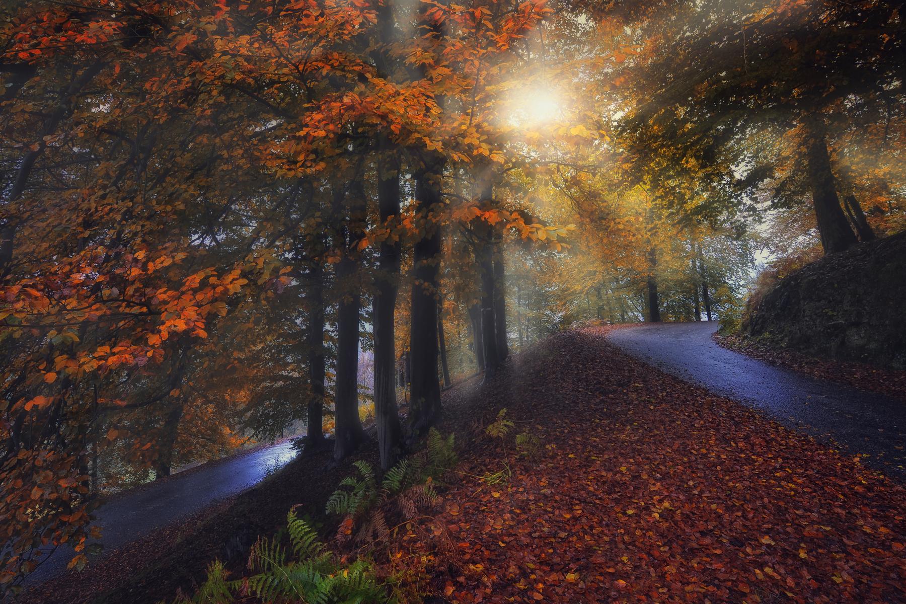 Roads that do not meet ......