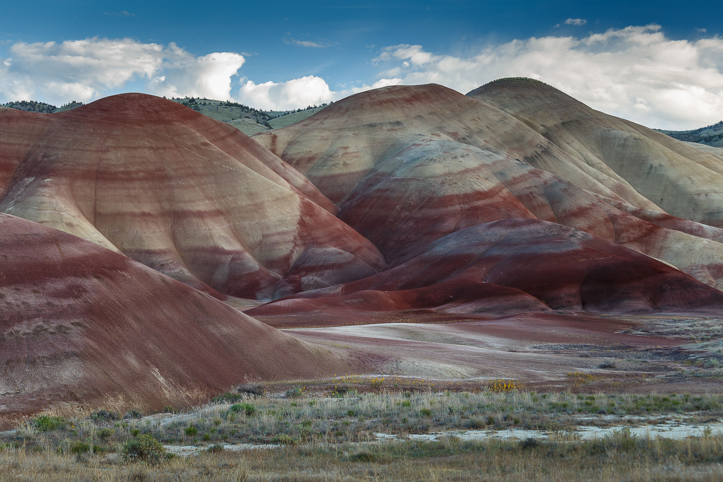 Painted Hills - OR...
