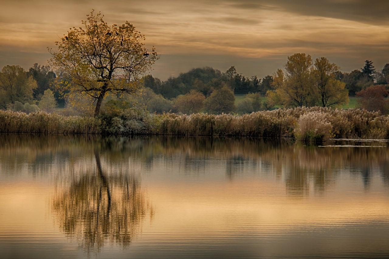 Melancholy of autumn!...