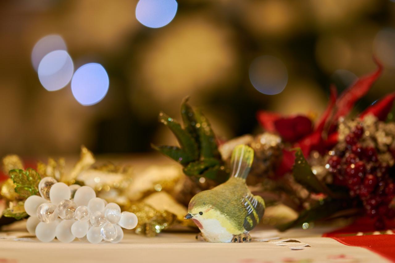Christmas macro...