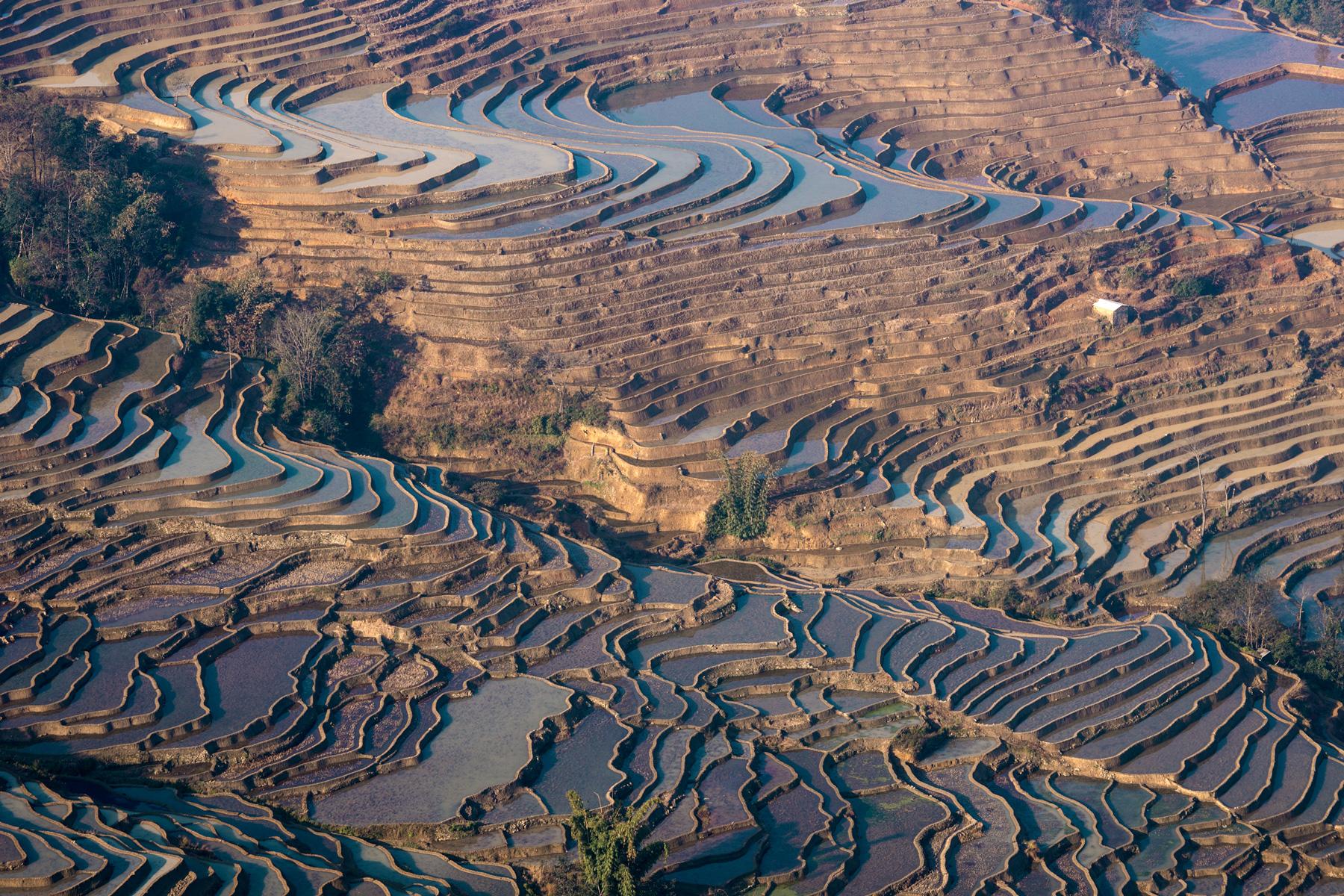 China rice terraces...