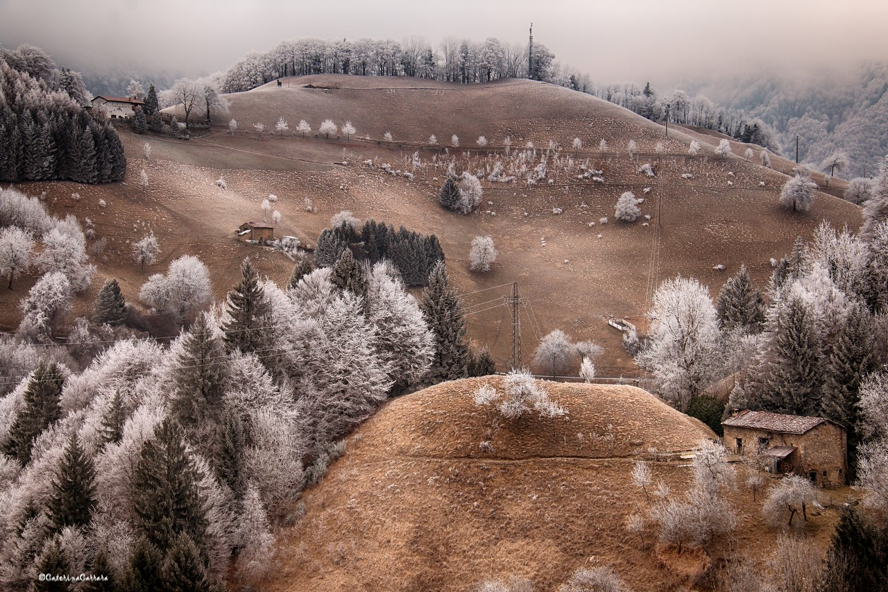 Hoarfrost instead of snow !!!...
